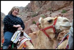 Epi on a camel in Petra